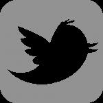 twitter-1024x1024_grey